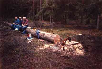 The men out in the woods after felling the future mainmast.